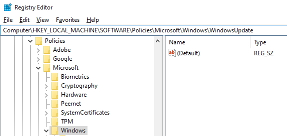 Microsoft\Windows\WindowsUpdate    settings in Registry editor