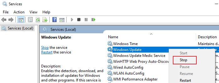 Stop Windows Updates